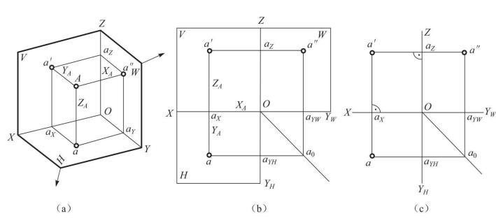 点在三投影面体系中的投影